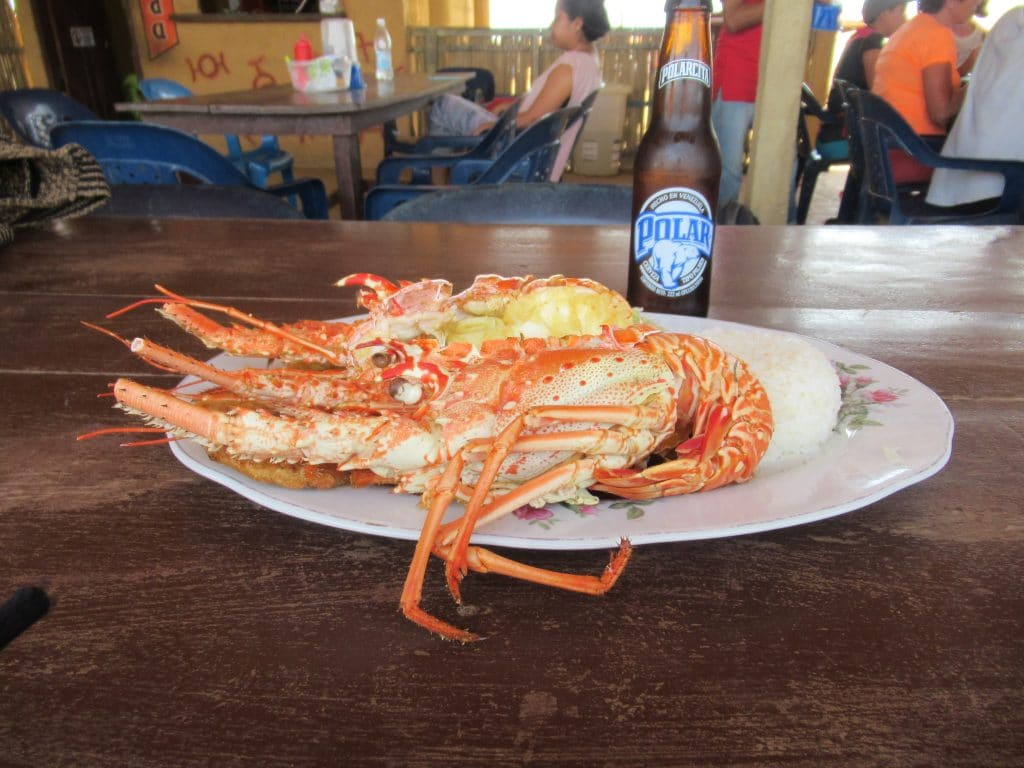 A lobster lunch plate with beer, a great choice for lunch from the restaurants in Punta Gallinas.