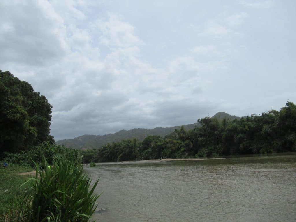 The river with the forest on either side you will see if you travel to Palomino, Colombia.