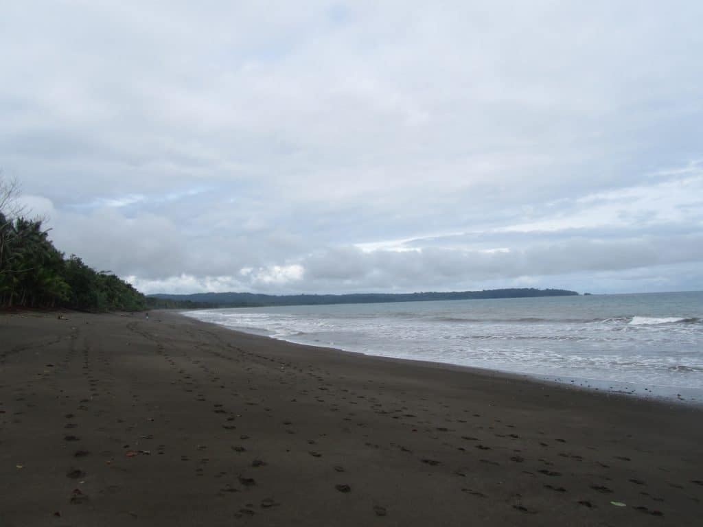 The beach at Playa Guachalito with one person in the distance and come footprints, showing how isolated the beaches you see when you visit Nuqui are.