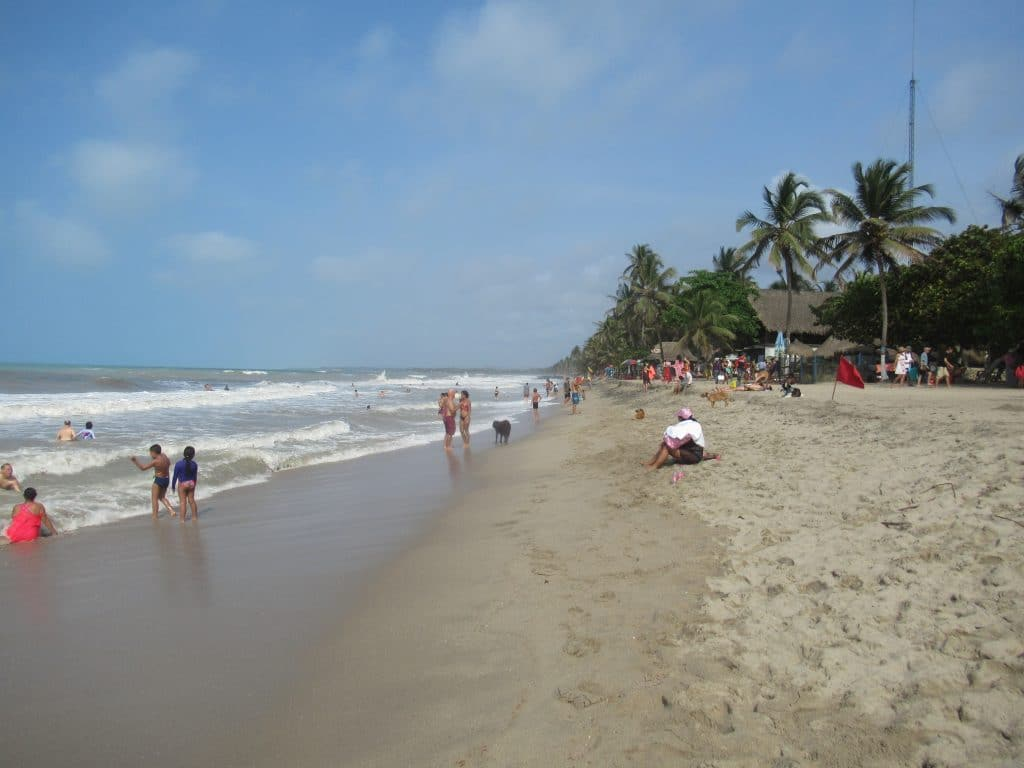 Photo of the beach front in Palomino, Colombia with people sitting and standing on the beach and palm trees in the background.