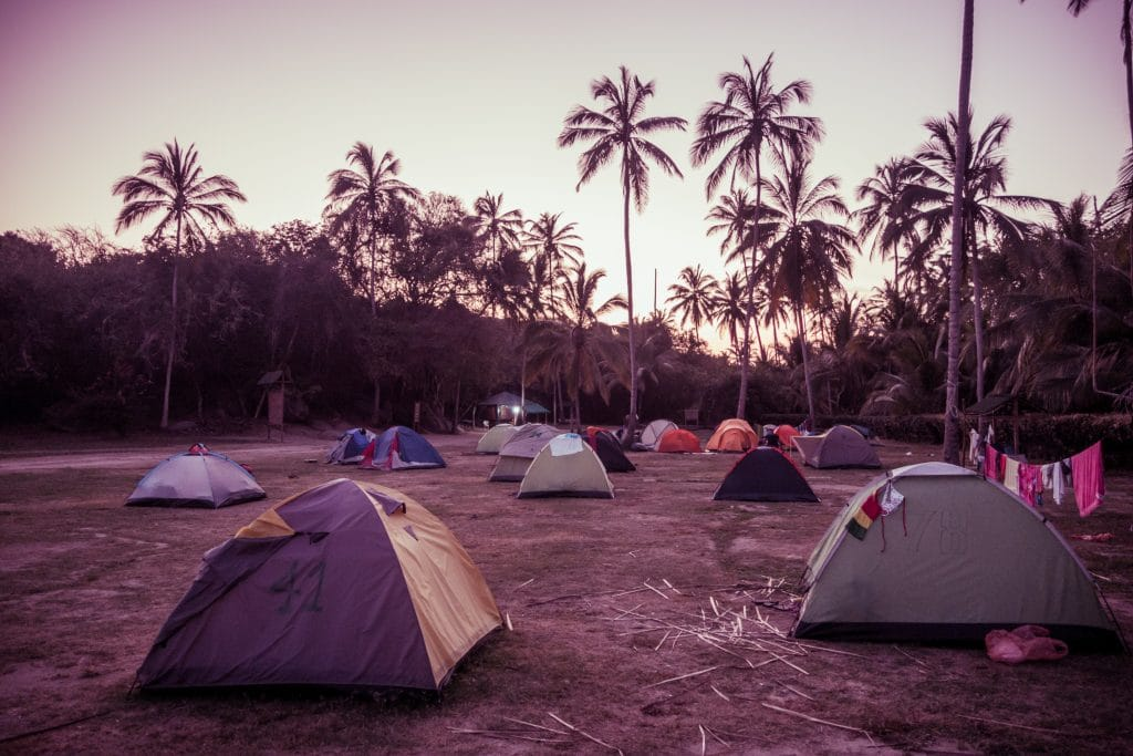 Photo of tents with palm trees in the background a the camp site at Tayrona.