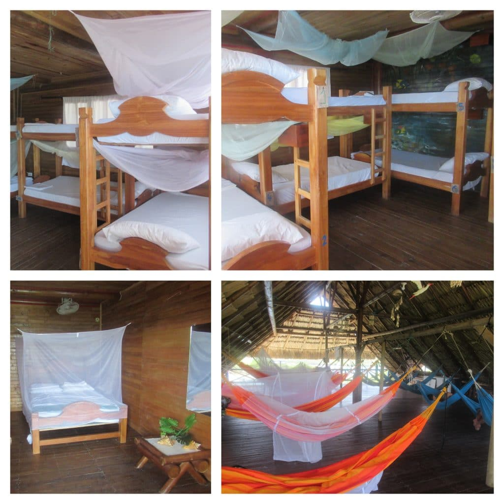 Collage of photos of different rooms at Isla Roots Hostel