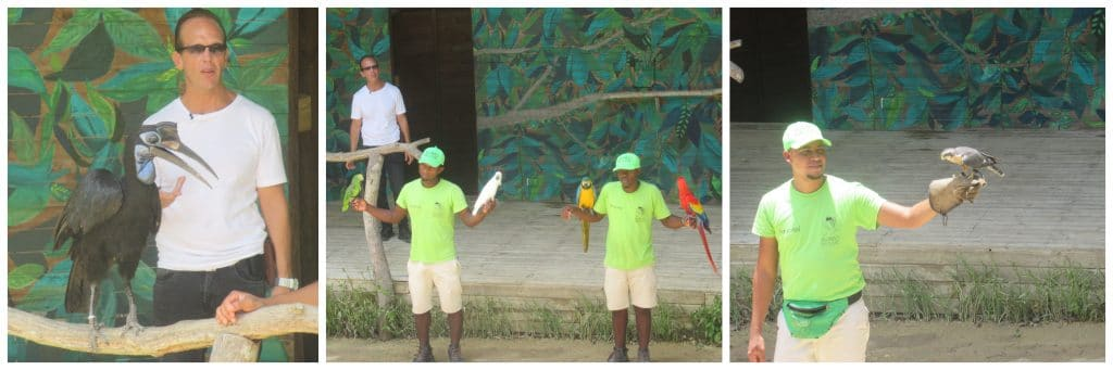 Photos showing the trainers with birds at the presentation at the Colombia bird zoo.