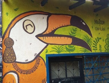 Photo of street art showing a Tucan graffit in La Candelaria
