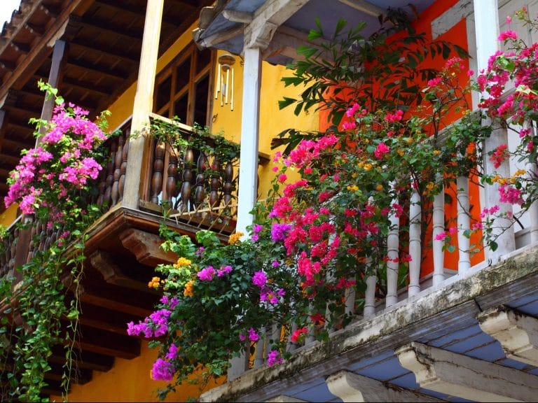 Photo of flowers on a balcony in Cartagena Colombia